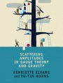 Scattering Amplitudes in Gauge Theory and Gravity - ISBN 9781107069251