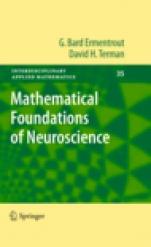 Mathematical Foundations of Neuroscience - ISBN 9780387877075