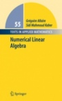 Numerical Linear Algebra - ISBN 9780387341590