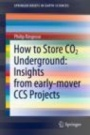 How to Store CO2 Underground: Insights from early-mover CCS Projects - ISBN 9783030331122