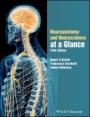 Neuroanatomy and Neuroscience at a Glance - ISBN 9781119168416